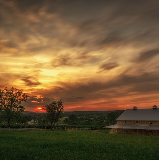 Here's a throwback to an epic sunset at the Cidery.  Catch one yourself at next Thursday's farm-to-table cider pairing during Cider Week Hudson Valley. 🌅 Special appetizers will be expertly paired with hard ciders including new single varietals and classic favorites. Signature bites prepared by @penningsfarm, brick oven pizza from Pennings Farm Cidery and vegetarian appetizers from local restaurant, @consciousfork Warwick.  Tickets on sale through Saturday, June 8th, link in bio.❤️🍎 📸 @renato_silvis_photography  #ciderweekhv @newyorkcider #brickovenpizza #glutenfreepizza #farmtotableappetizers #pickcider #cidercountry #penningsfarmcidery  #hudsonvalleyeats #hudsonvalleydrinks #weekendgetaway #nycfoodies #sunsetviews