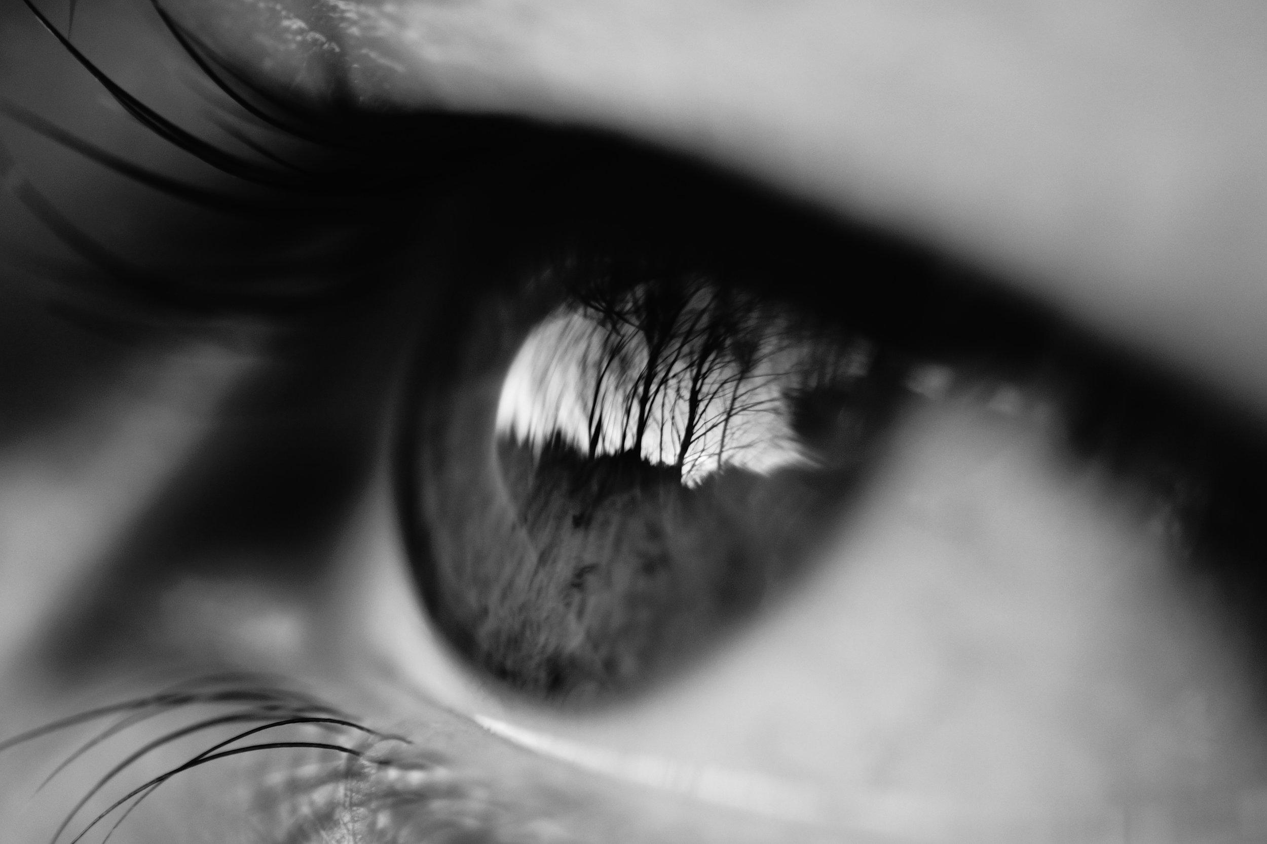human-eye.jpg