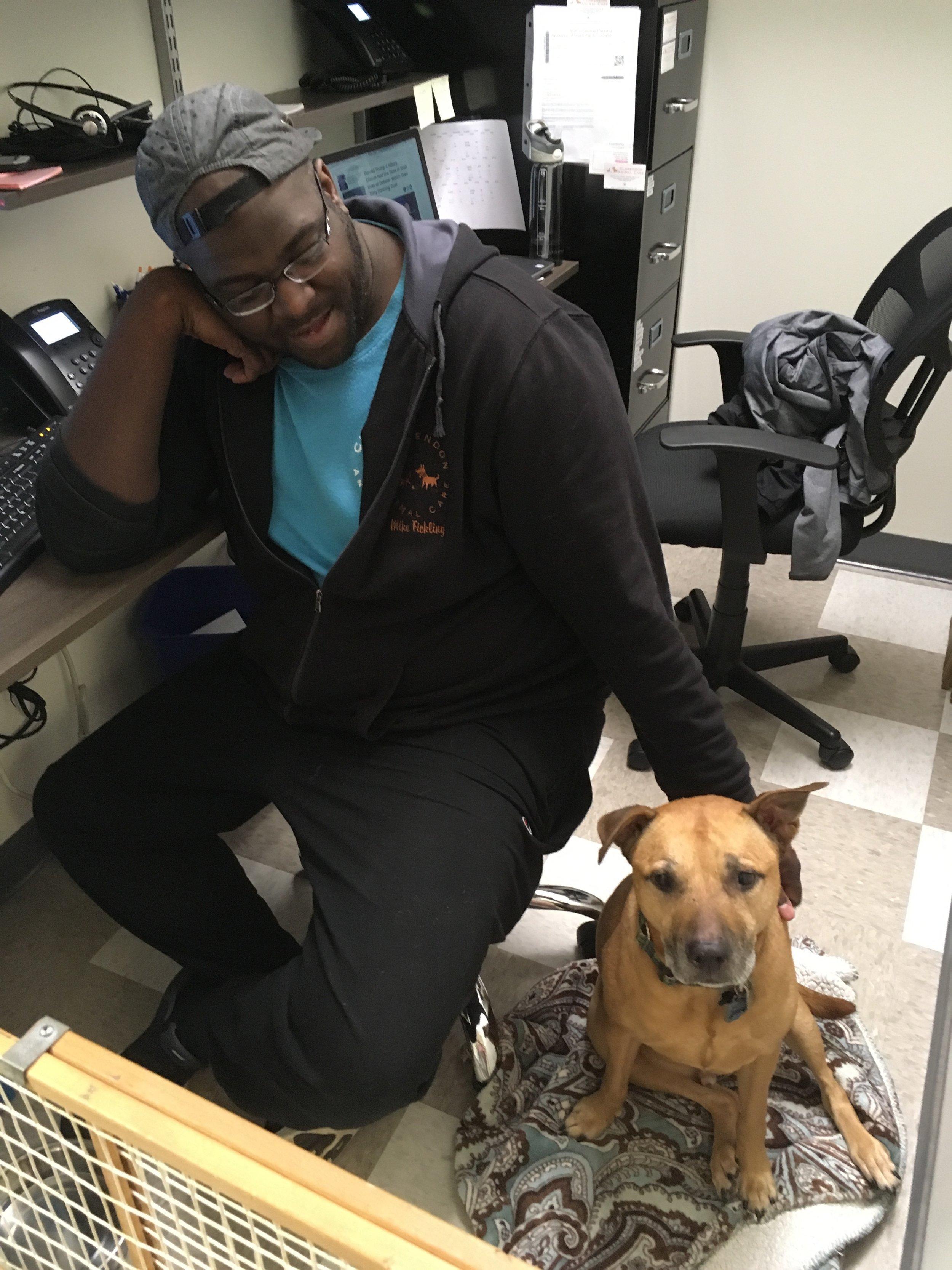 Clarendon Animal Care Veterinary Clinic Arlington Virginia Staff with a Dog