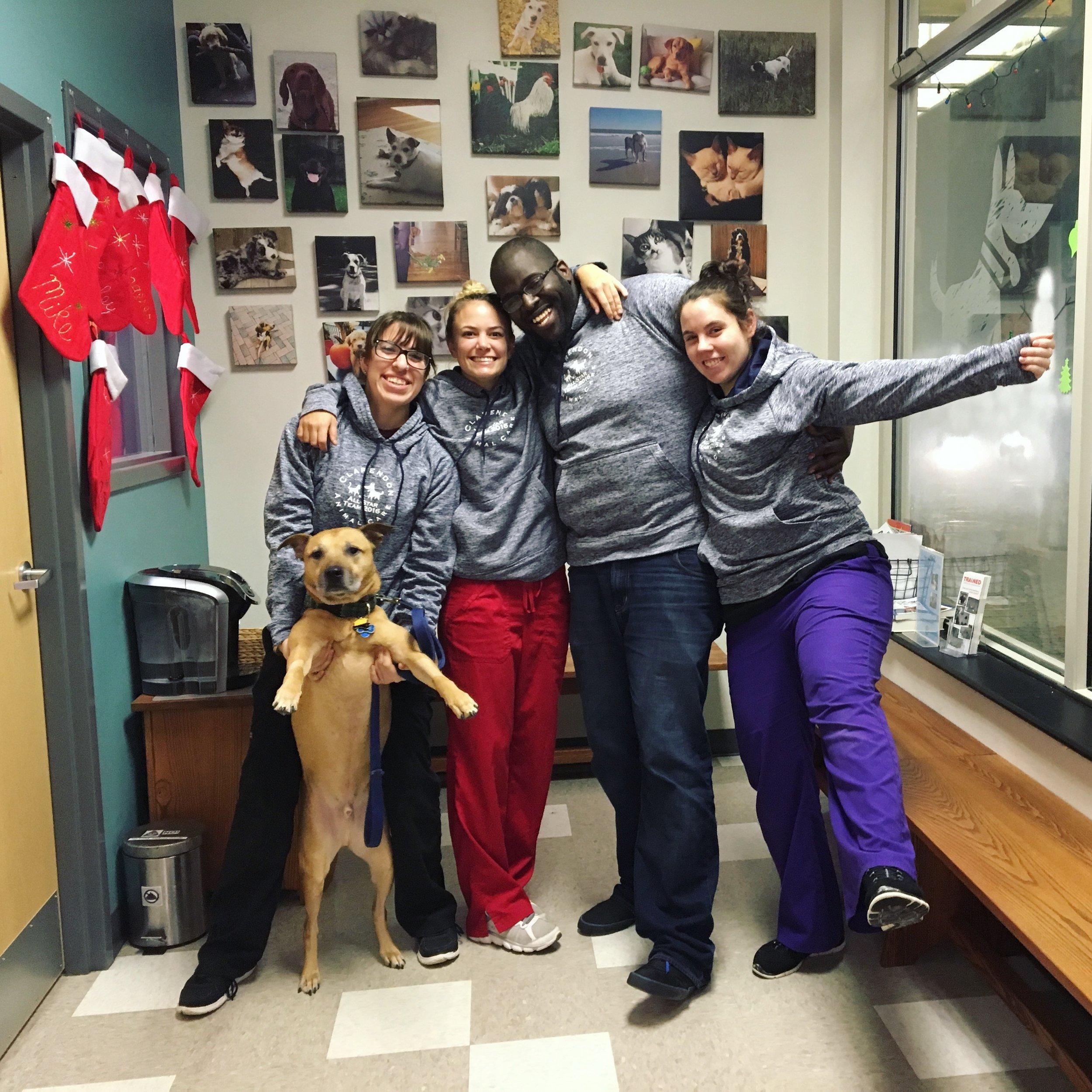 Clarendon Animal Care Veterinary Clinic Arlington Virginia Staff Group Photo