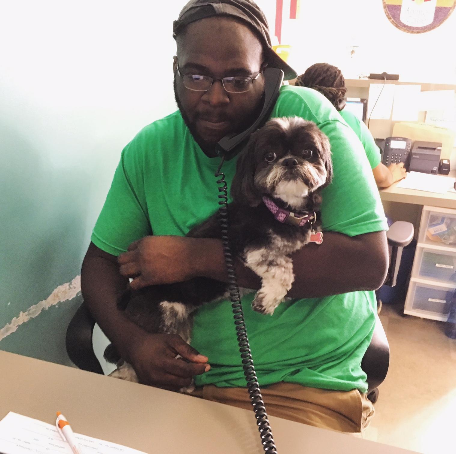 Clarendon Animal Care Veterinary Clinic Arlington Virginia receptionist holding a dog