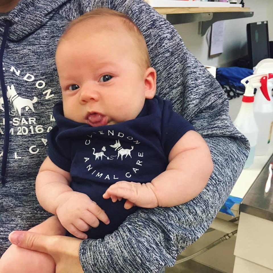 Clarendon Animal Care Veterinary Clinic Arlington Virginia baby