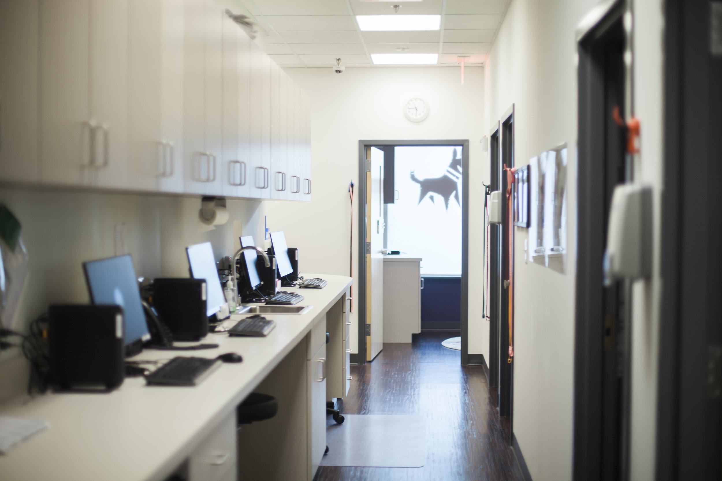Clarendon Animal Care Veterinary Clinic Arlington Virginia computer stations