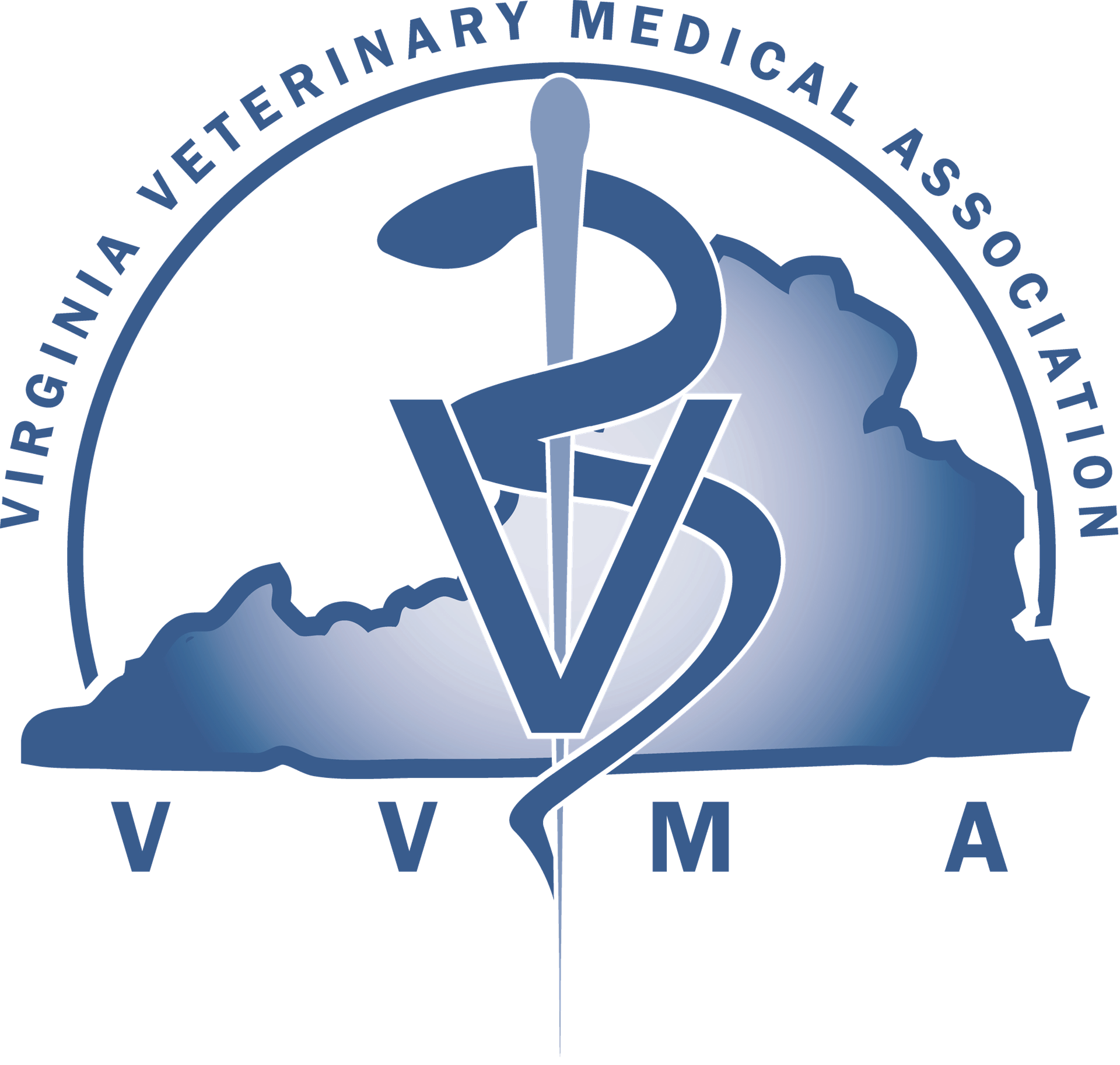 VVMA logo_transparent background.png