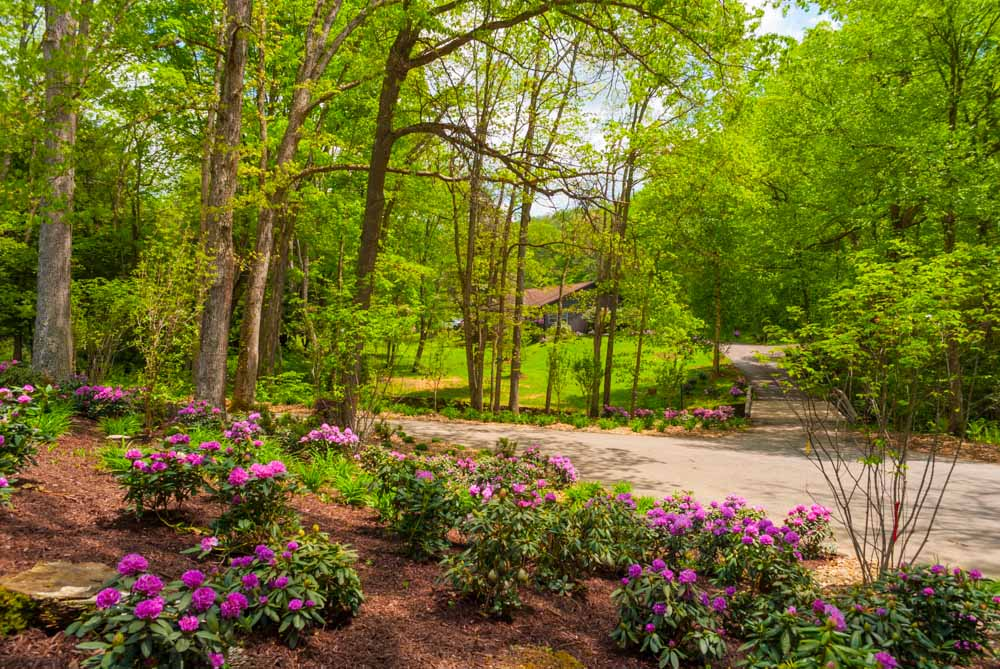 Fernstone Flowers & Landscaping-7.jpg