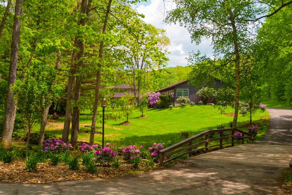 Fernstone Flowers & Landscaping-8.jpg