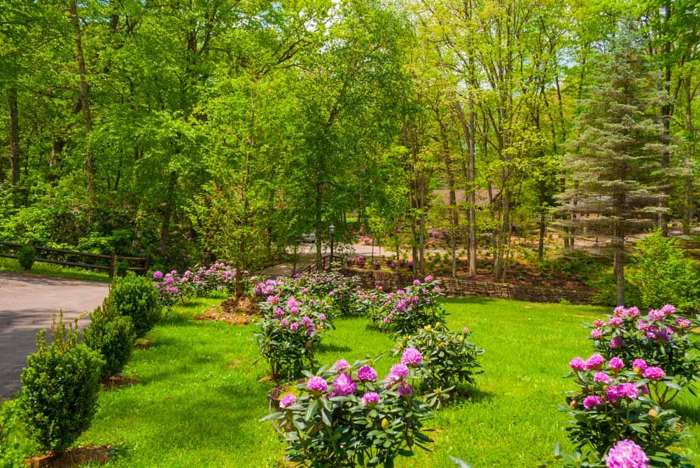 Fernstone Flowers & Landscaping-13.jpg