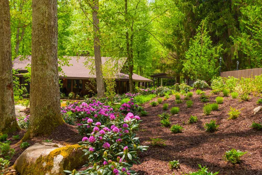 Fernstone Flowers & Landscaping-21.jpg