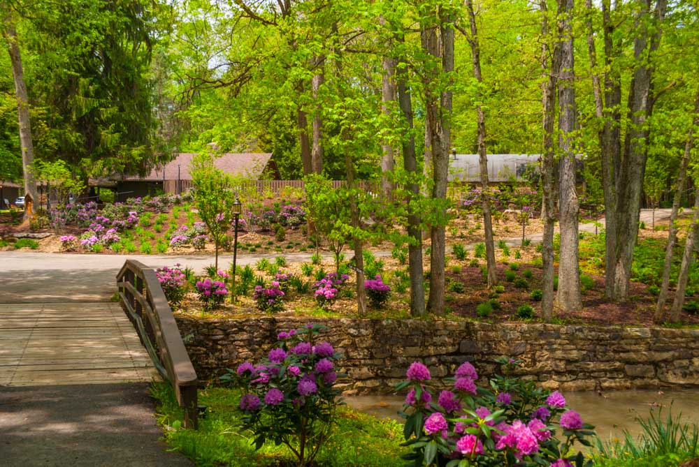 Fernstone Flowers & Landscaping-18.jpg