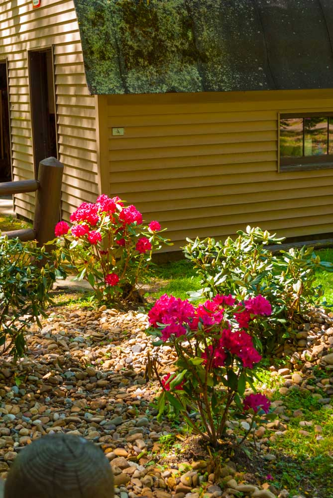 Fernstone Flowers & Landscaping-32.jpg
