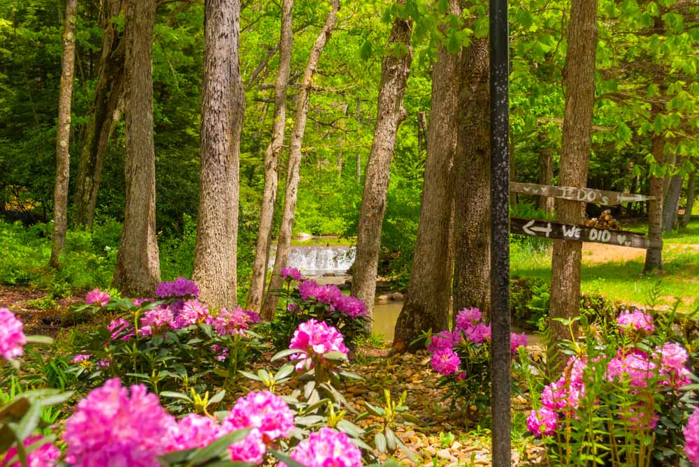 Fernstone Flowers & Landscaping-10.jpg
