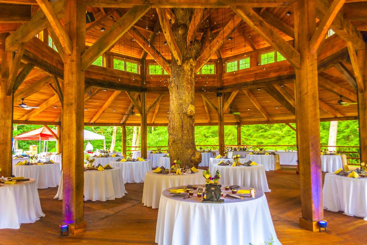 2015 Weddings_websize-28.jpg