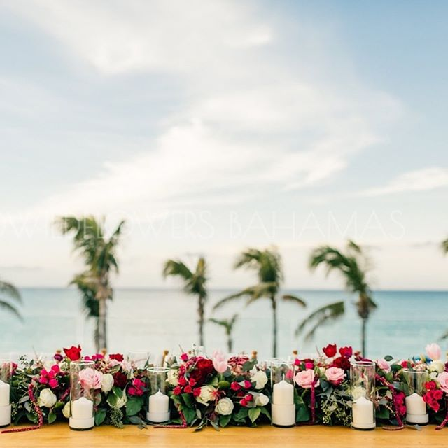 Shades of pink overlooking shades of blue 🌷🌸🌊 * * * #pink #blue #wedding #shadesofpink #shadesofblue #pinkwedding #oceanviews #palmtrees #turksandcaicos