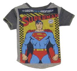 amazing-superman-small.jpg