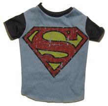 superhero-logo02-2010-103.jpg