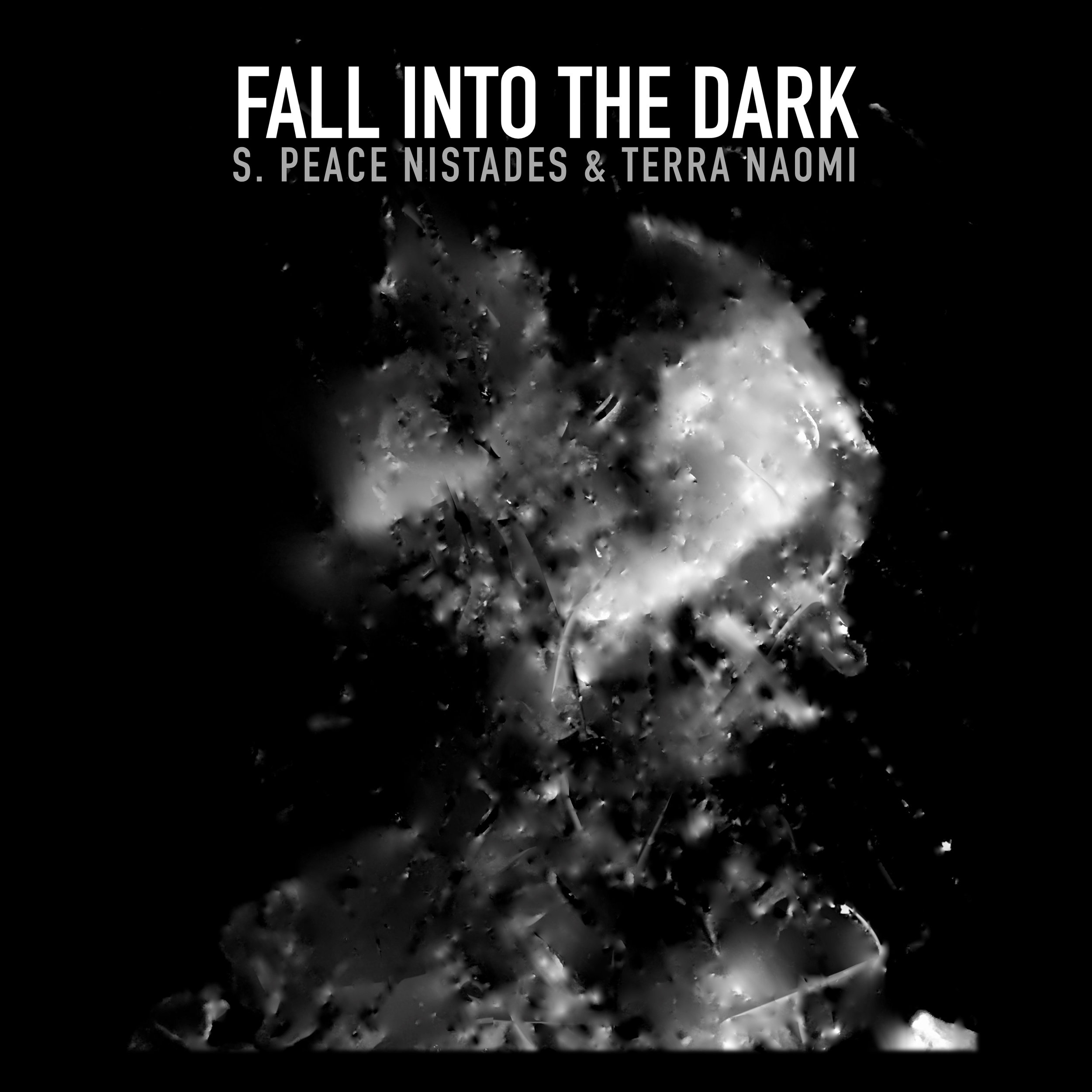 FALL INTO THE DARK Cover.jpg