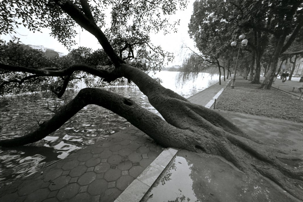 Hoan Kiem Lake, b&w version, Hanoi, Vietnam (2015)