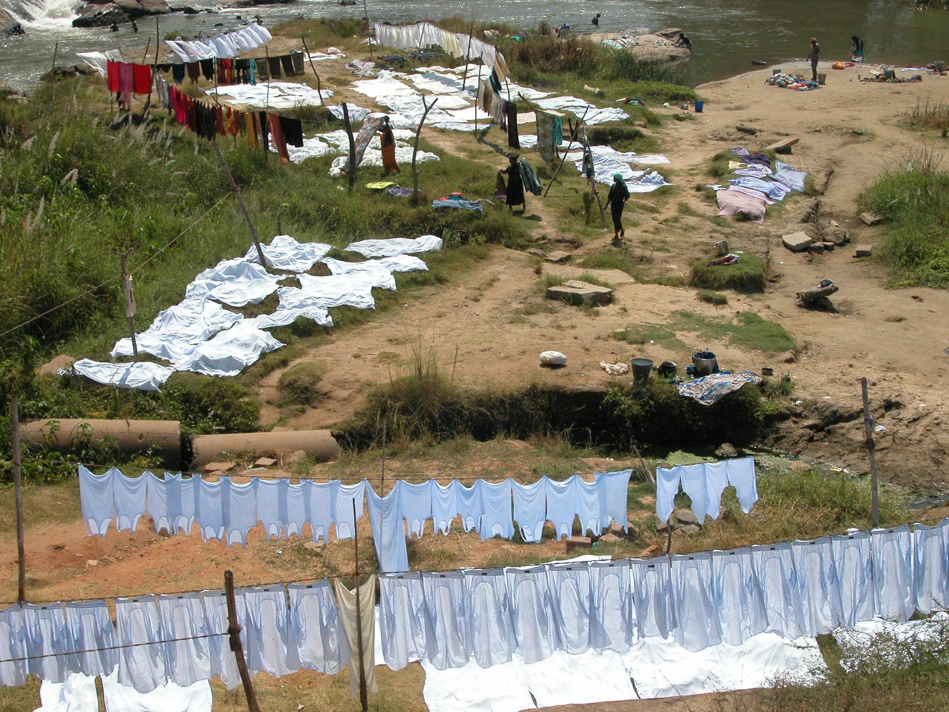 Landscape, South India (2009)
