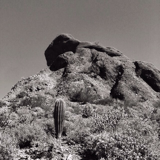 photos ©Steve Stober from the Arizona desert