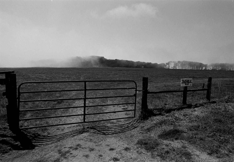 California Landscape, (2008)