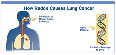 Radon comes from the natural decay of Uranium that is imbedded within our earths crust. Once formed, Radon itself will continue to decay, forming what is referred to as Radon Decay Products. It is these RDP's that can potentially cause damage to your lungs when inhaled.