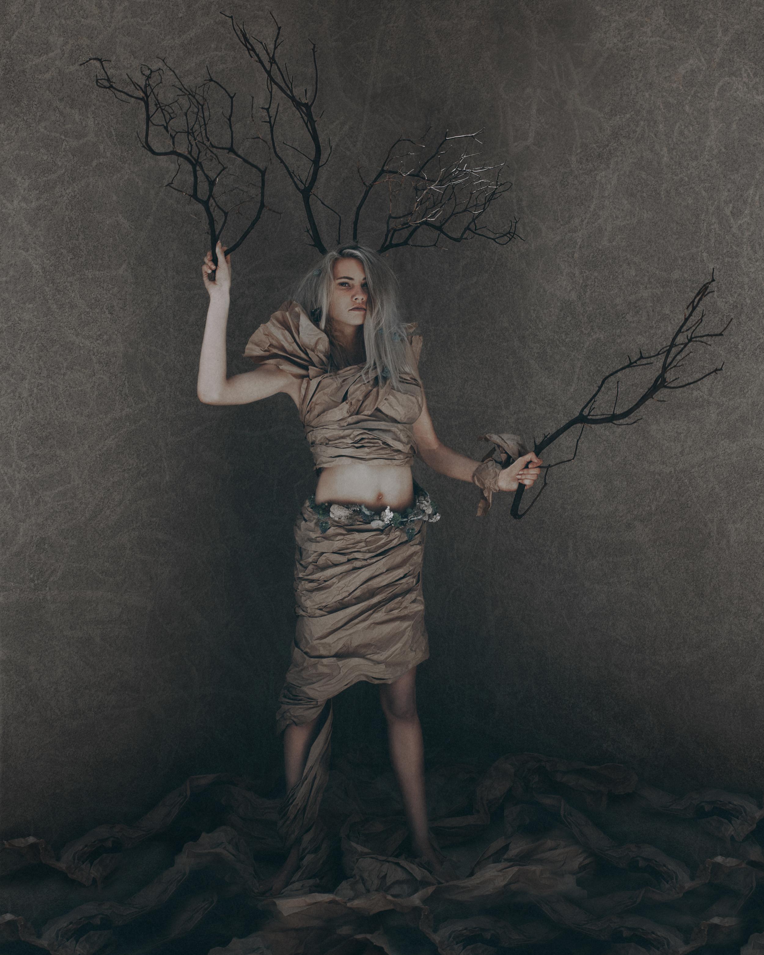 Ally-tree.jpg