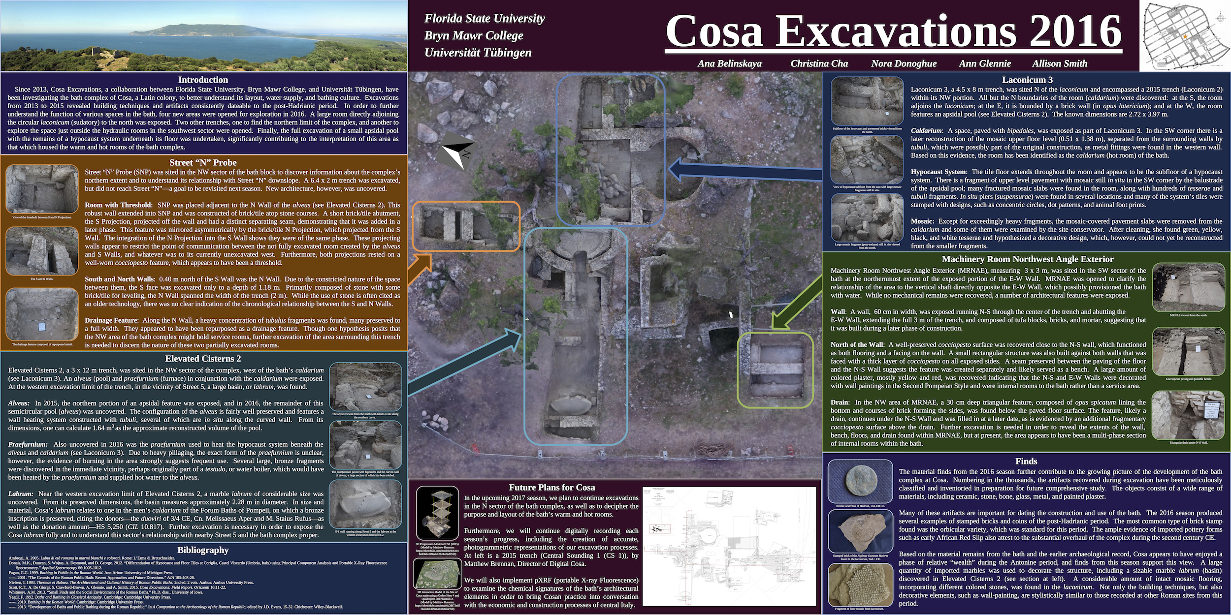 Cosa AIA 2017 Poster