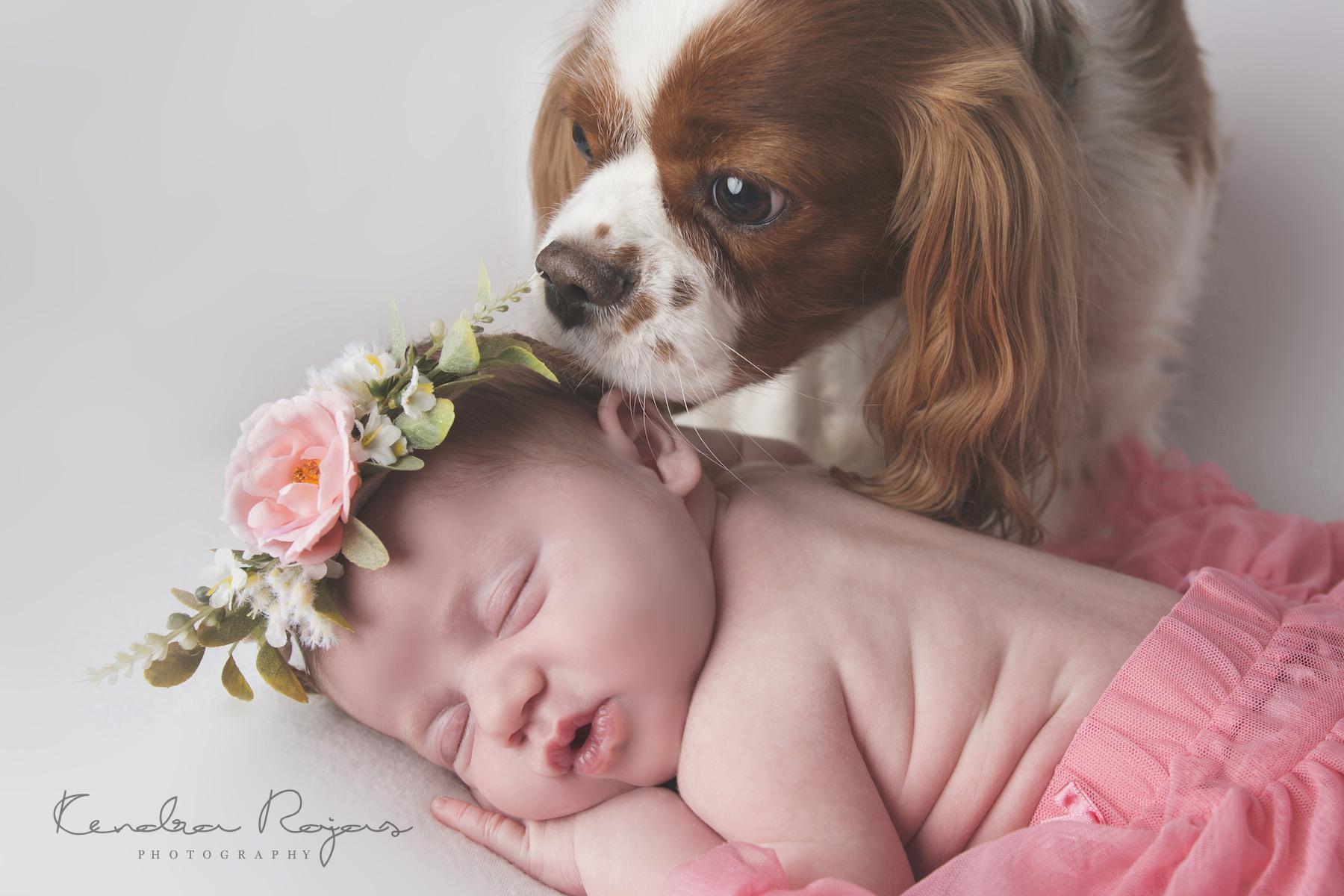 Newborn_Charlotte 112216_05_LOW_Social.jpg