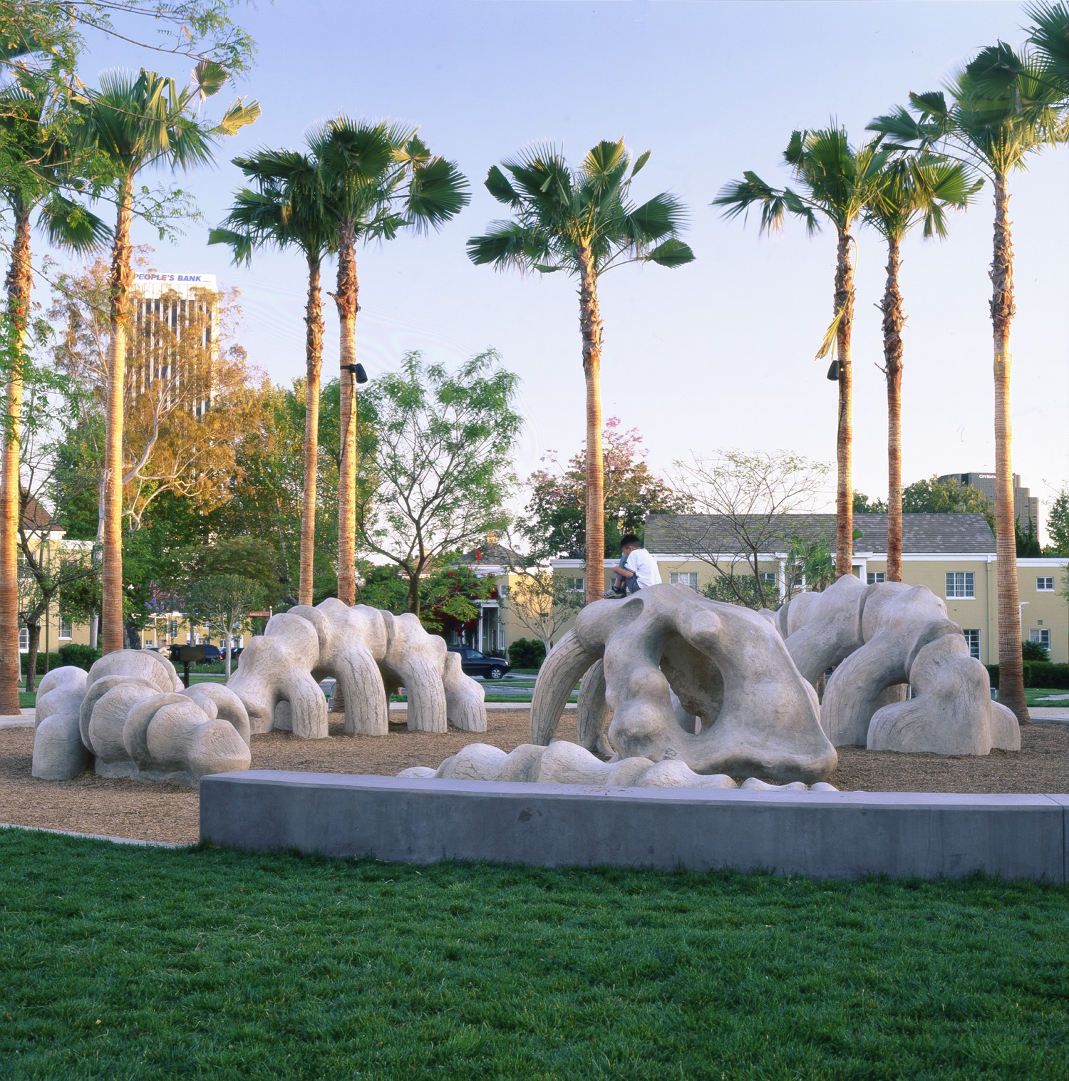Encircled by palm trees lining the outdoor grounds of Park La Brea, a fossil-like sculpture of a saber tooth cat emerges, half-sunken, from a sandy floor.  To the passer-by and the public imagination, this skeletal sculpture injects a modern, iconic interpretation of natural history into the realm of unusual public artwork.  However contemporary its purpose may be, the sculpture's dramatically enlarged scale and dinosaur-like appearance produce a playful investigation into the prehistoric life force that once animated Los Angeles'sprawling desert basin.  Only blocks away, the La Brea tar pits - one of the most recognized fossil localities of the Earth's last Ice Age - draw crowds of thousands each year to study and learn about its peculiar geographical and geological personality.  These remarkably life-like, sculpted remains of a storybook creature bring imaginative access to La Brea's fossil excavation pits and unearth the forgotten history of a modern metropolis.  Residing at a unique juncture of the arts and recreation, and delicately integrated with its surrounding landscape, this sculpture also has a practical purpose: a children's playground and climbing structure.  While interactions with fossilized remains are typically limited to detached observation, this sculpture invites the viewer to touch, explore, and discover its disjoined features.