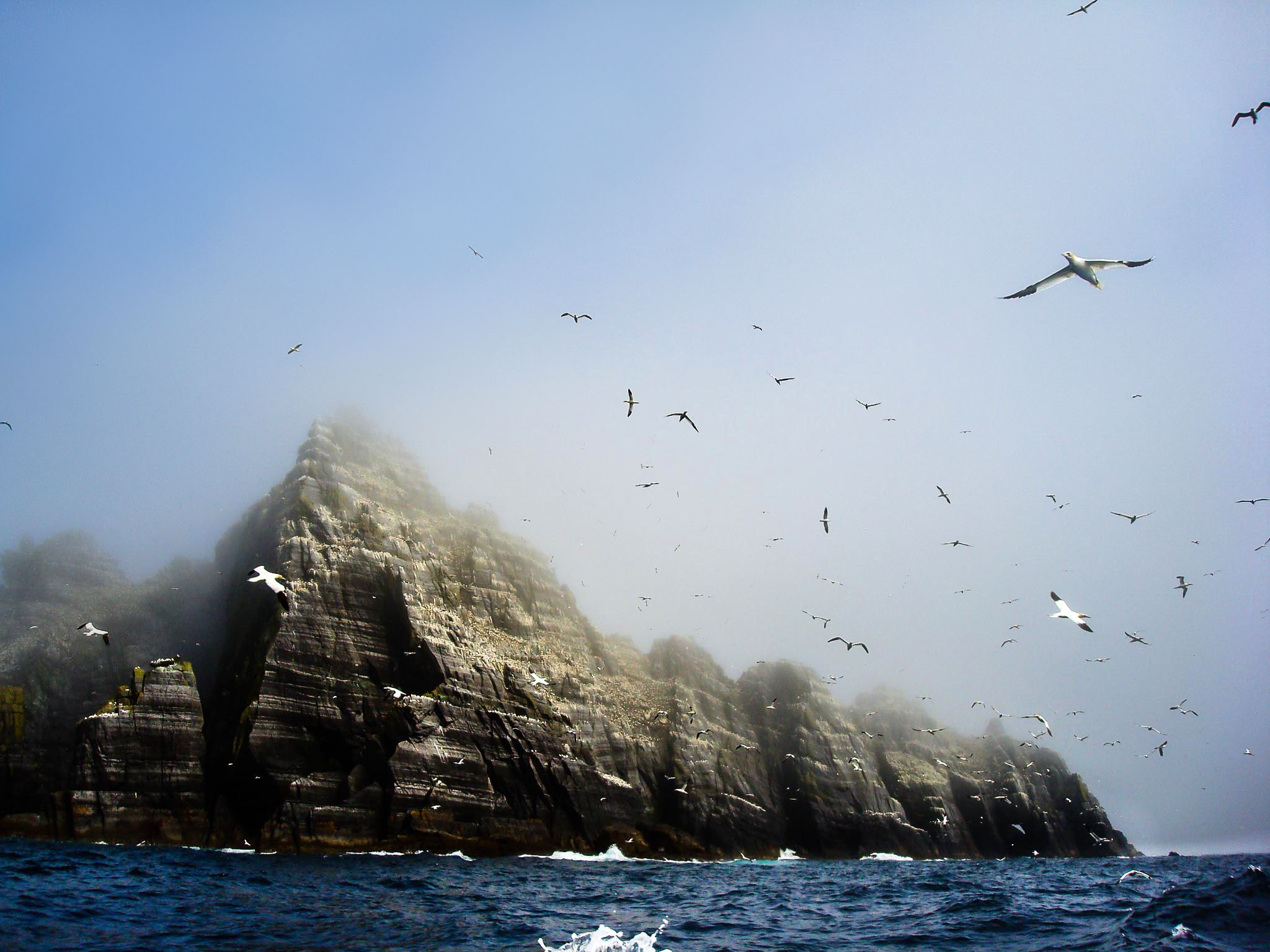Little Skellig Island, Ireland
