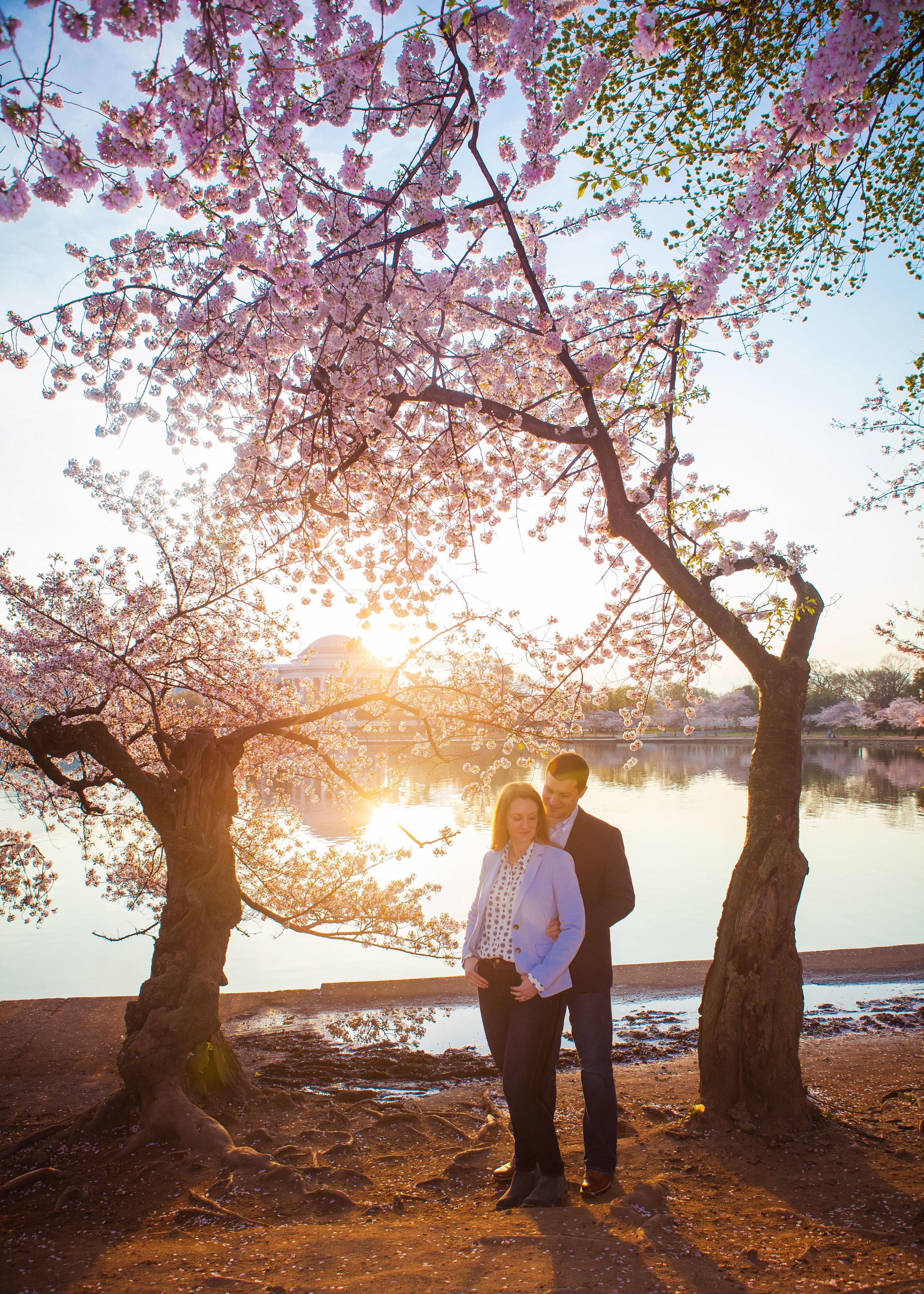 Julie Curt & Katie Brian Cherry Blossoms DC - 007.jpg