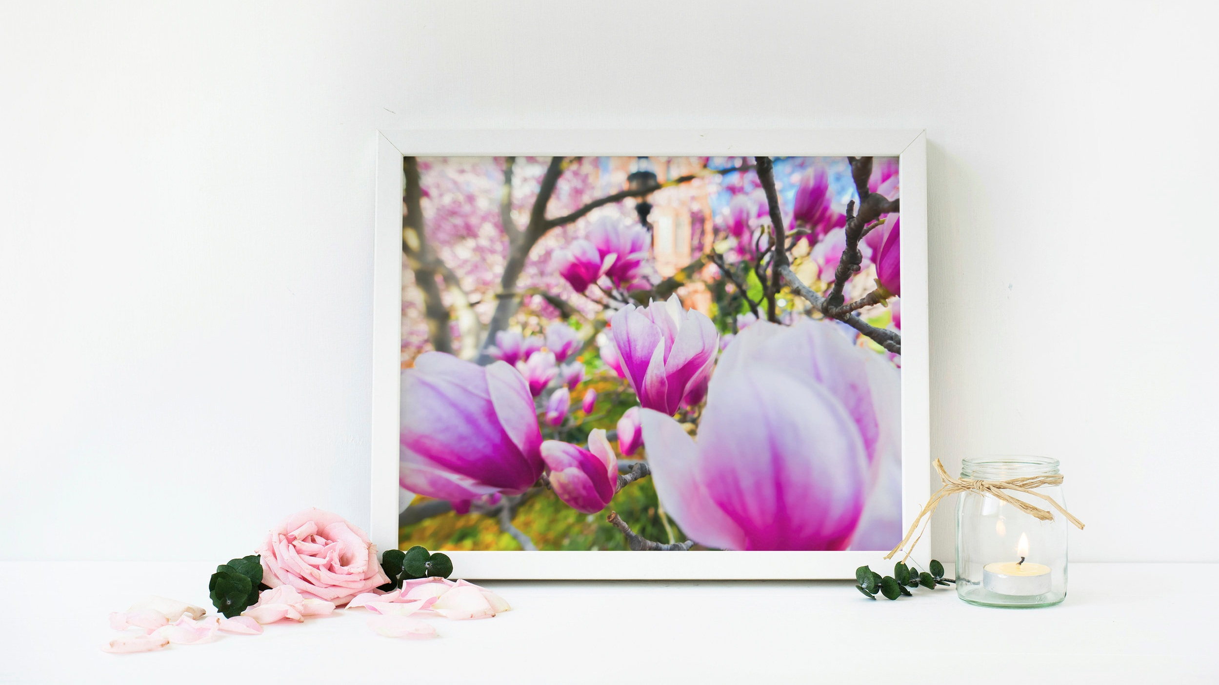 *Magnolia Smithsonian Small Art Sample.jpg
