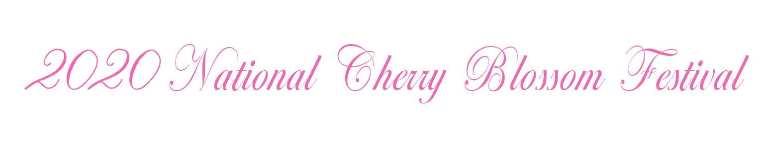 2020 cherry blossom family portrait photographer