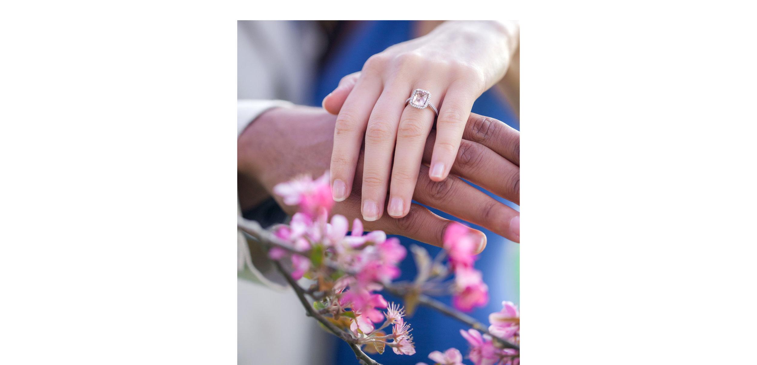 *Kristin & Andrew Engagement - 039.jpg