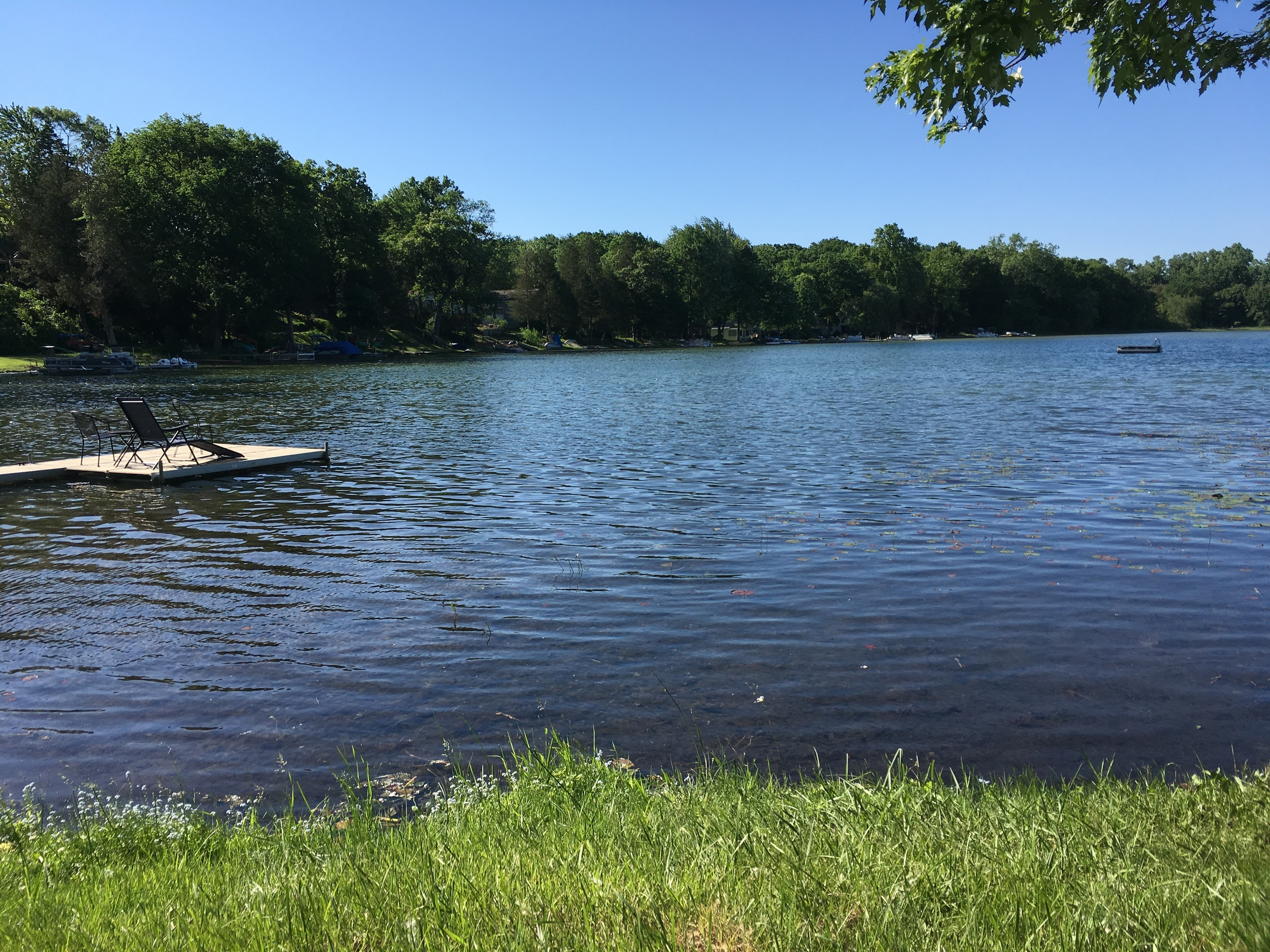 Sold - Listed at   $79,900   3816 Langley, Pinckney, MI 48169 Pinckney Schools  Buildable, southern facing lot with 50 feet of frontage on the water gently slopes to quiet, no wake, Cordley lake - lovely for swimming, kayaking, sky & bird watching. Only 30 minutes to Ann Arbor, 20 minutes to Brighton.