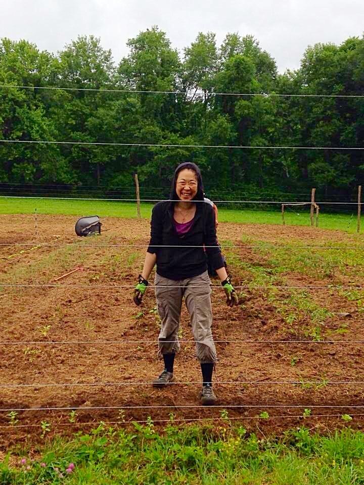 Kana learning to farm in the rain.