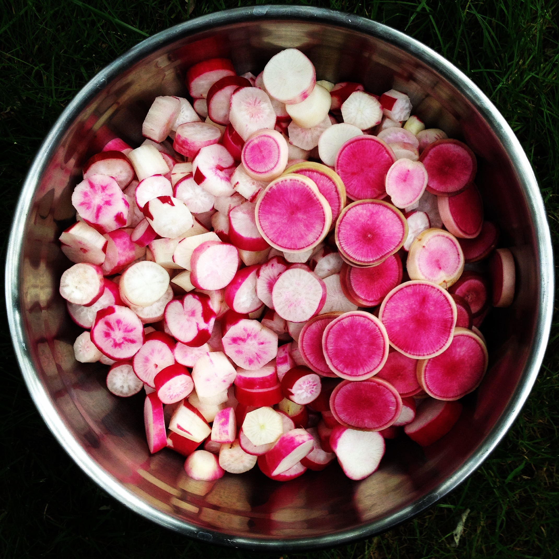 french breakfast red meat radishes