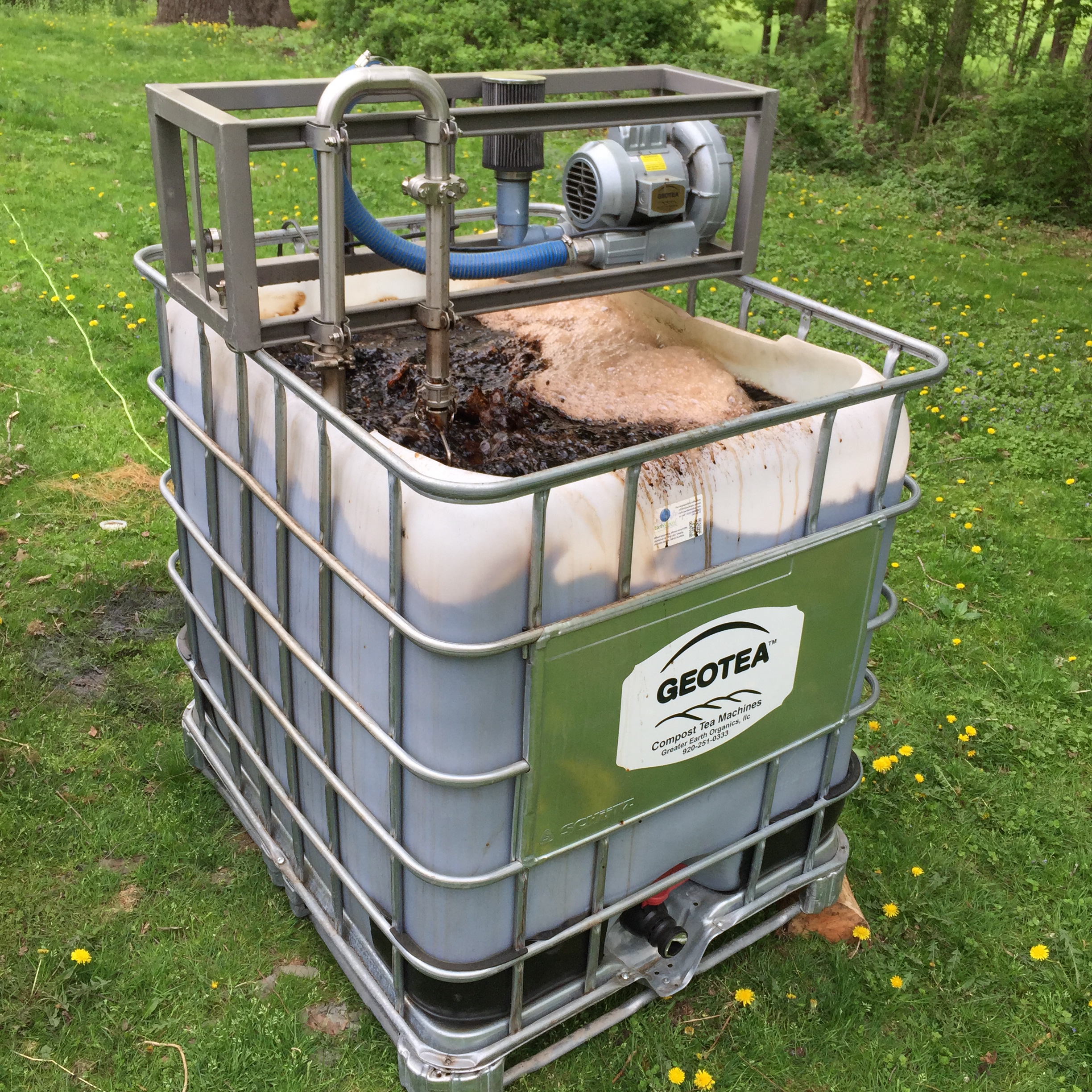 brewing compost tea