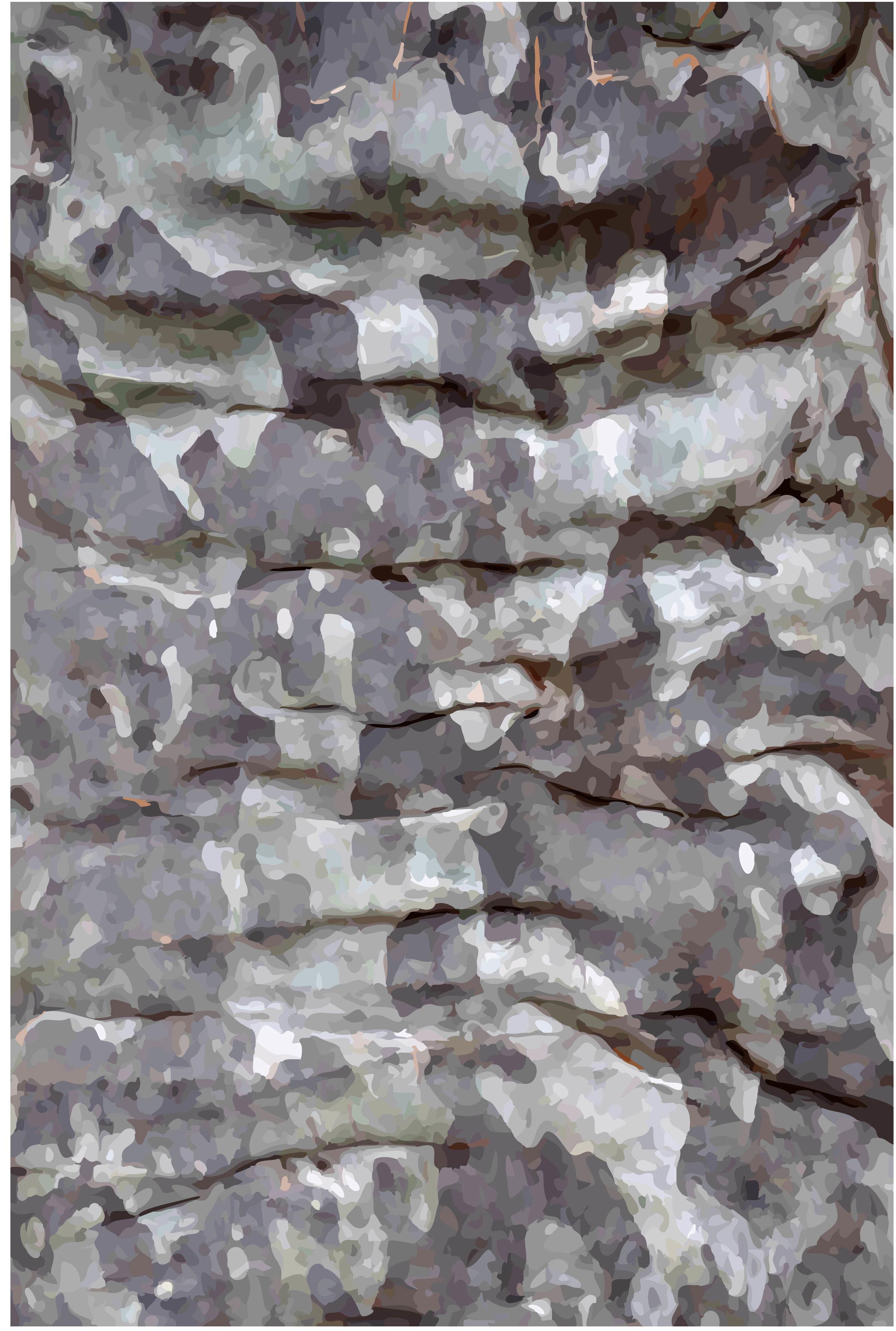 Maculata (Old Blotchy) #1