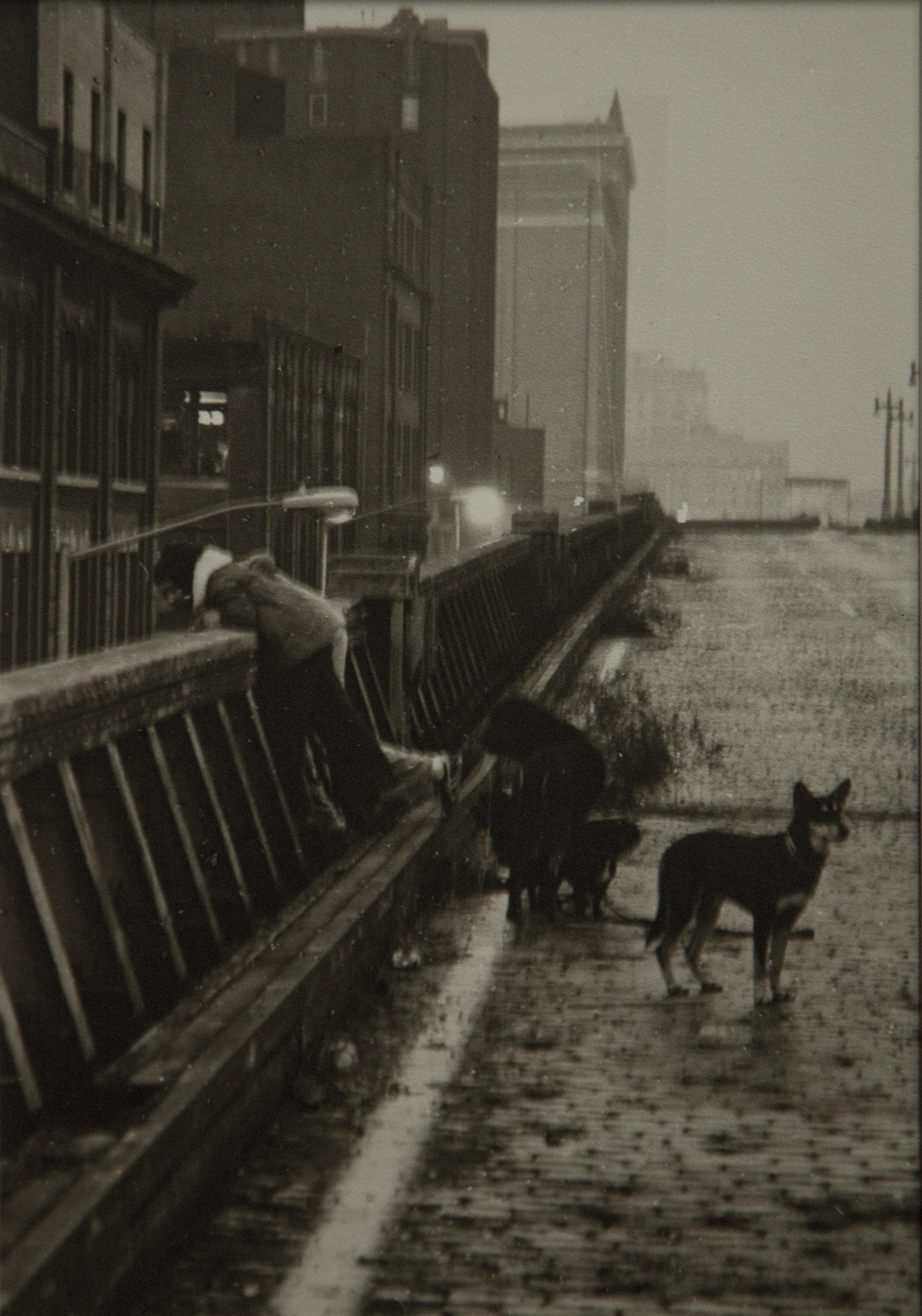 High Line 1977