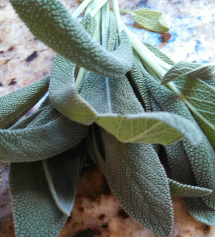 The more fresh sage leaves, the better!