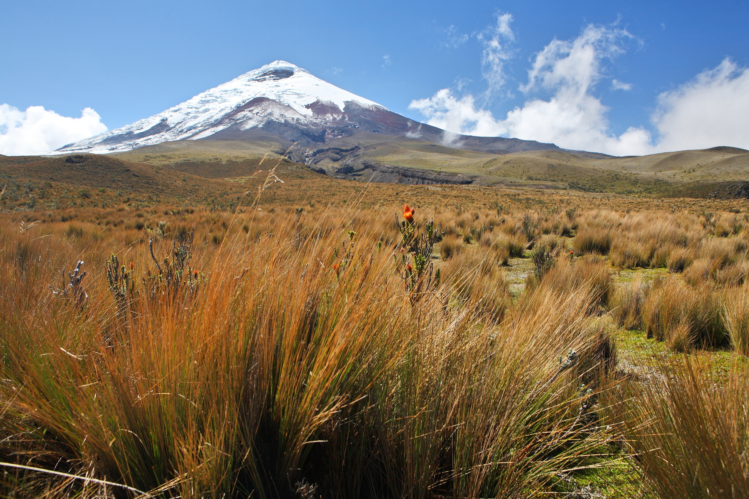 Ecuador MVI Cotopaxi--the-highes-26071247.jpg