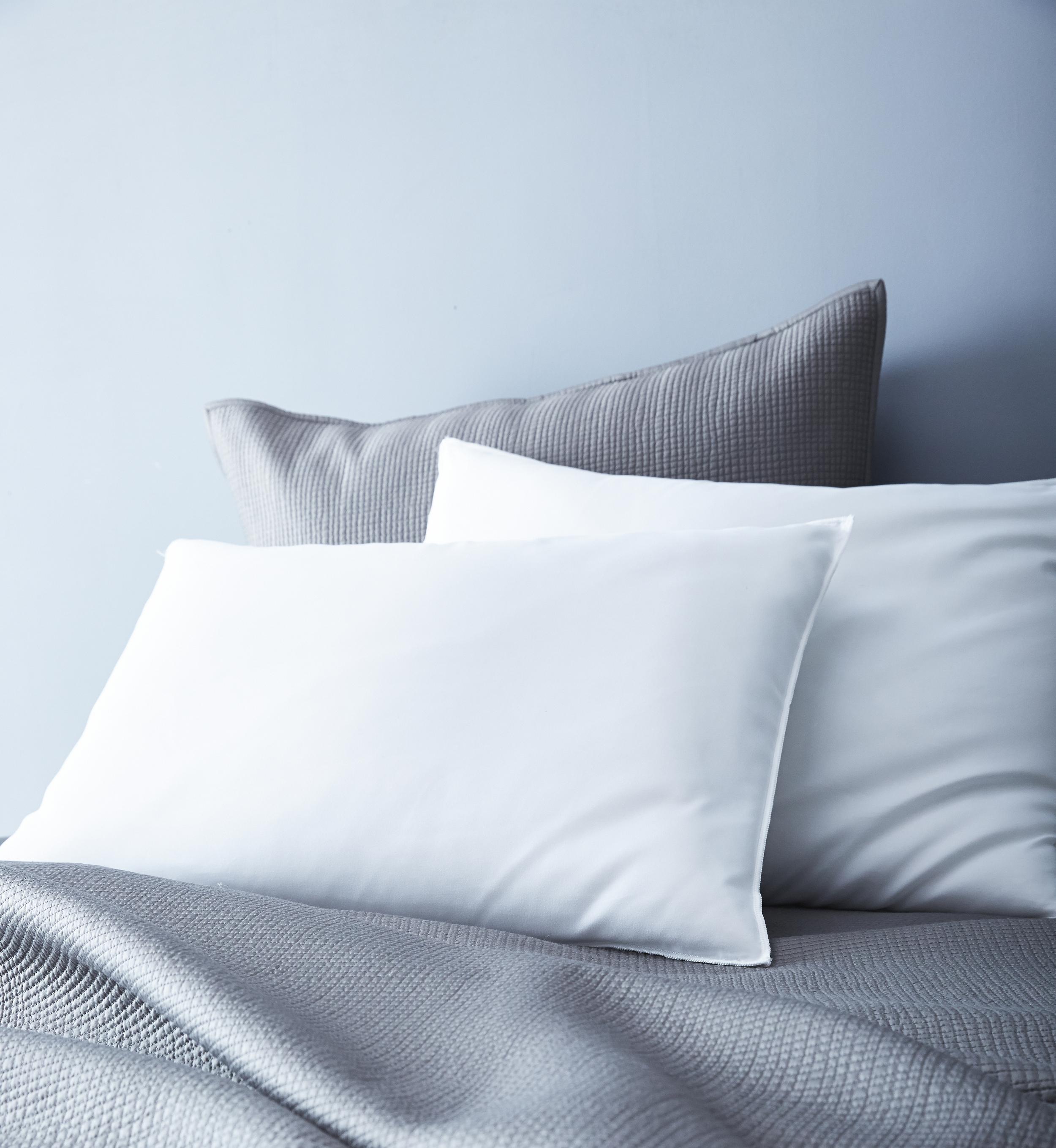 43701_Wholehome_2pk_pillow.jpg