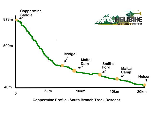 Copermine South Branch Profile_0.jpg