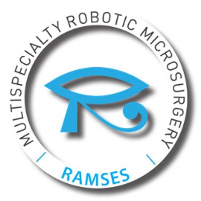 RAMSES.png
