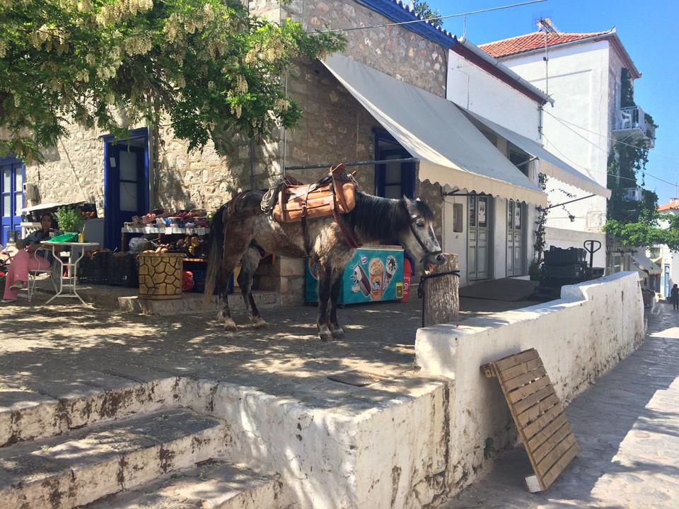 Experience Greek Music.jpeg