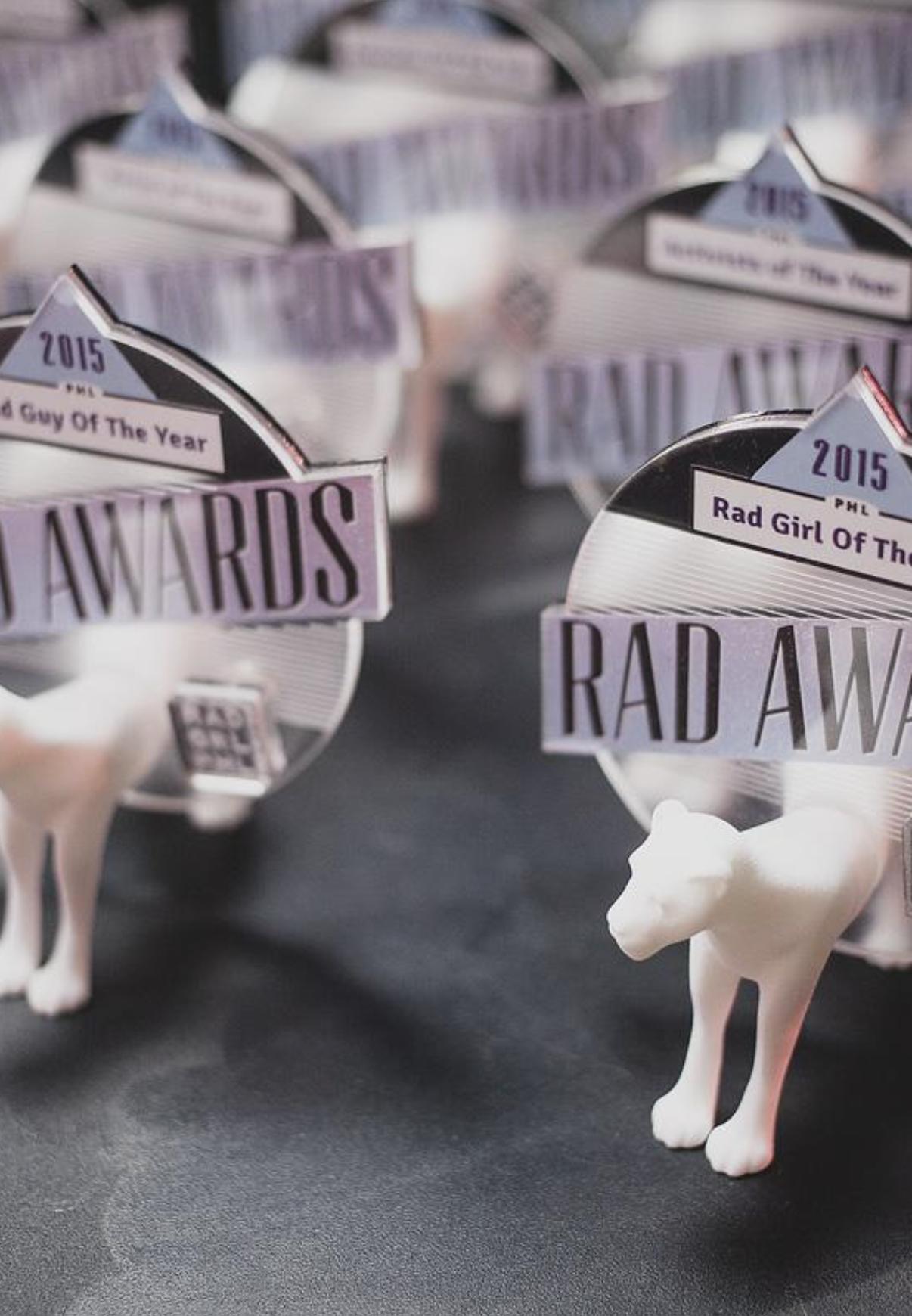 Denise Fike Rad Awards Nominee