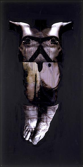 Ballerina- 96x48 in; inkjet on masonite with paint, resin, staples; 2002