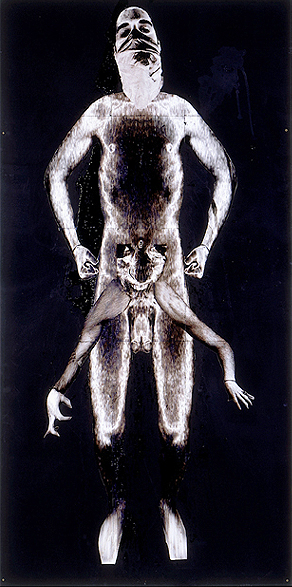 Solarised Body- 96x48 in; inkjet on masonite with paint, resin, tape; 2002