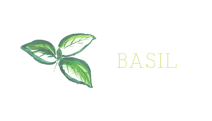 interstitials_basil.jpg